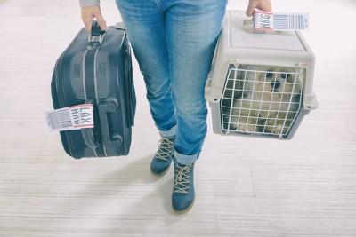 空港で犬の入ったクレートとカバンを持つ人