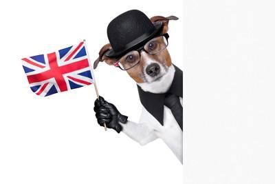 イギリス国旗と犬のイラスト