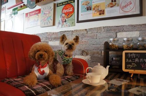 CAFE+BAR A+の店内