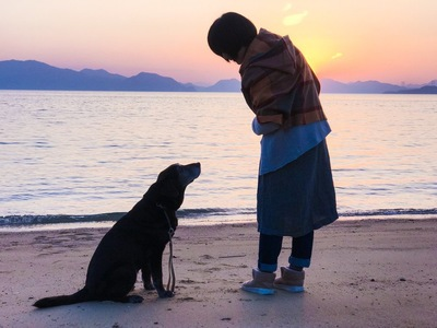 見つめ合う飼い主と犬