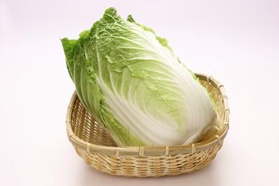 カゴに入れられた白菜