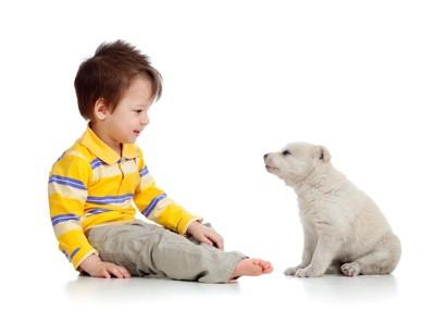 小さな子供と向き合う白い子犬
