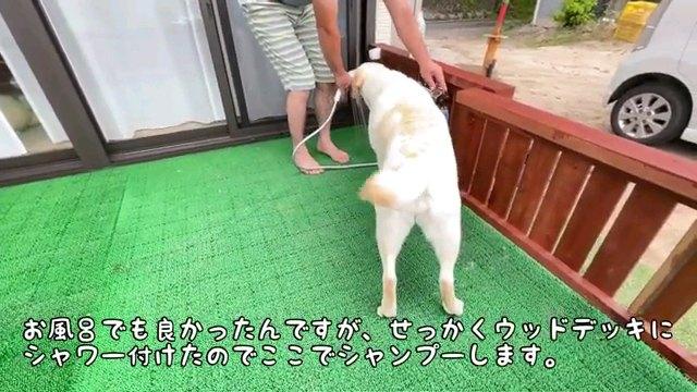 お風呂でも~字幕