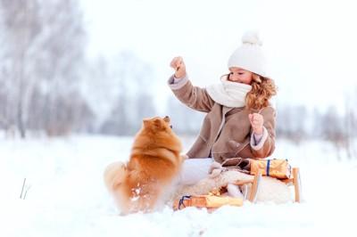 雪の上で遊ぶポメラニアンと女性