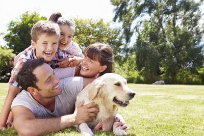 家族と自然の中でくつろぐ犬