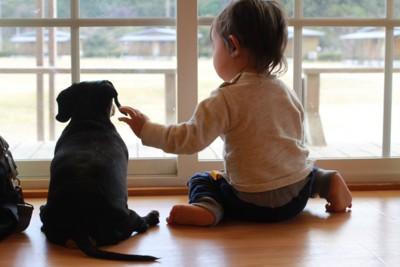 座る犬と子ども