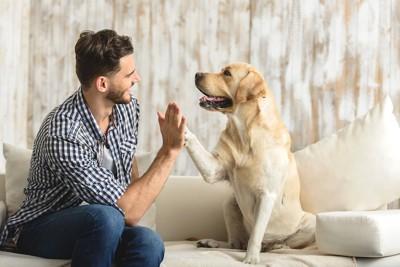 ソファーの上で犬とハイタッチする男性