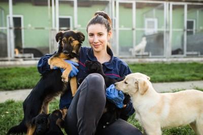 シェルター職員の女性と犬たち