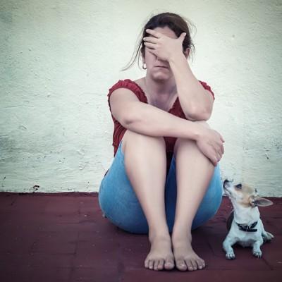 落ち込む女性に寄り添い見上げる犬