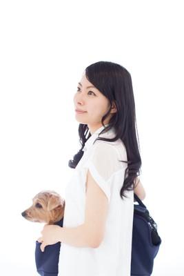 女性の持つキャリーバッグから顔を出す犬