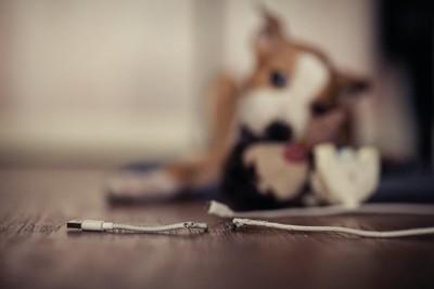噛みちぎられたケーブルと奥で遊ぶ犬