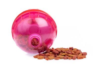 ドッグフードが入っているピンクのボール