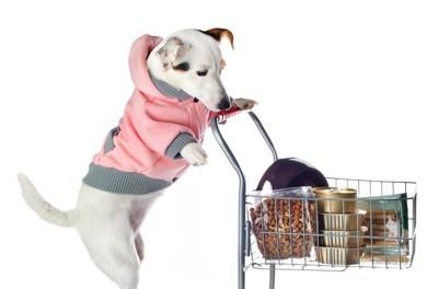 買い物カゴを押す犬