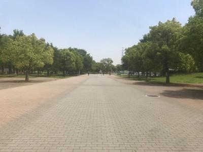 広く歩きやすい歩道
