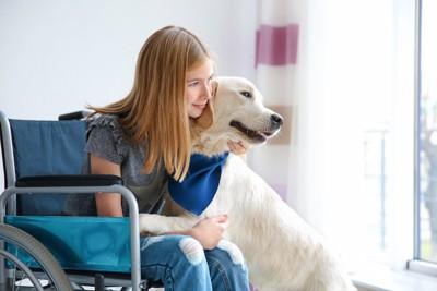 ラブラドールを抱きしめる車椅子の女の子