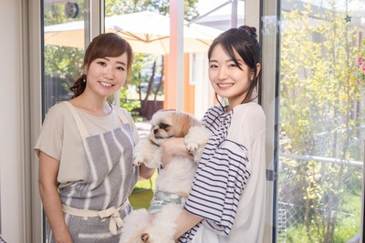 ペットサロンの店員と飼い主と犬