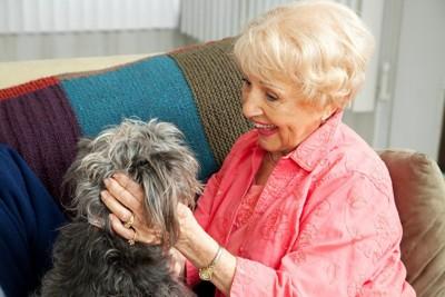 小型犬とシニアの女性