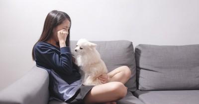 泣いている女性と犬
