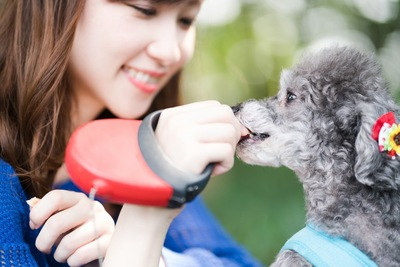 犬におやつをあげている女性