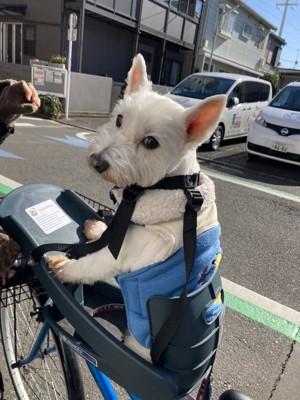 ちーちゃん自転車