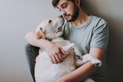 白い大型犬を抱っこして見つめる男性
