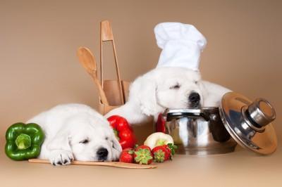寝る犬達と鍋と食材