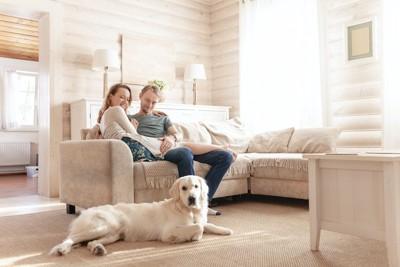 ソファーに座るカップルの足元で寛ぐゴールデンレトリバー