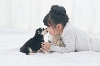 女の子の口元を舐める子犬