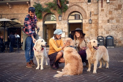 3組の人と犬