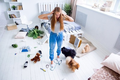 犬に荒らされた部屋で頭を抱える女性