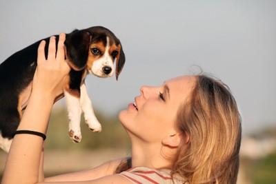 ビーグルの子犬を抱き上げる女性