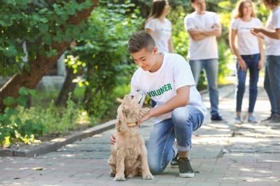 ボランティアの男性に撫でられる犬