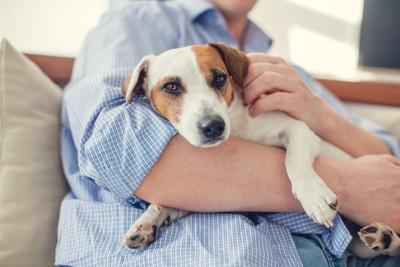 嫌そうに飼い主に抱かれる犬