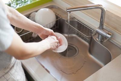皿を洗っている様子