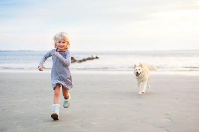 子どもを追いかける犬