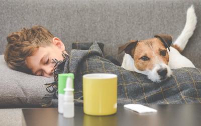 テーブルに置かれた薬と一緒に寝ている犬と子供
