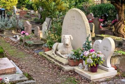 犬の墓碑があるペット墓地
