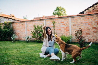 庭で女性と遊ぶ犬