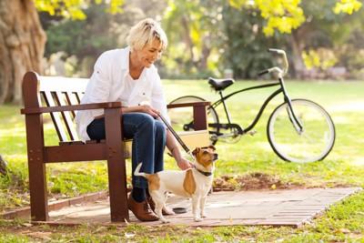 優しく愛犬を撫でる女性