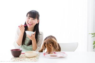 食事中の女性と犬