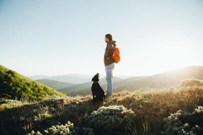 飼い主と登山する犬