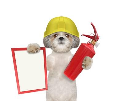 消火器を持った犬