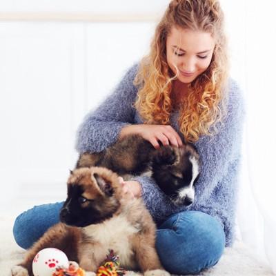 2匹の子犬と女性