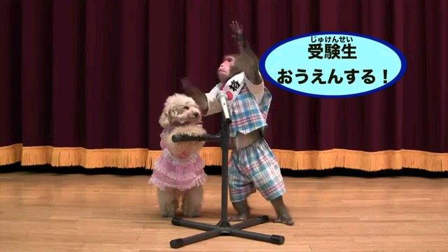 受験生~字幕