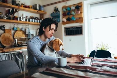 犬を膝に乗せてパソコンを見る男性