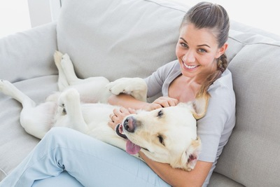 女性の膝の上に寝転ぶ犬