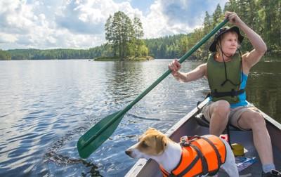 カヌーに乗る犬