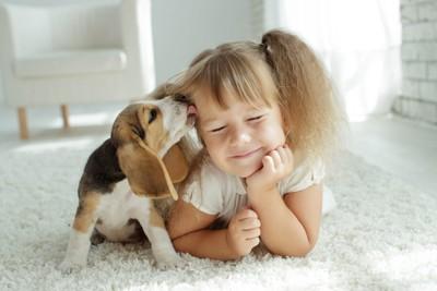 カーペットの上でくつろぐ女の子の顔を舐める子犬