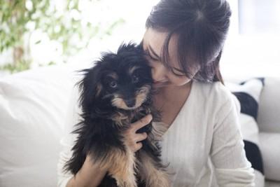 不安そうな犬を抱きしめる女性