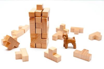 積み木と犬の人形